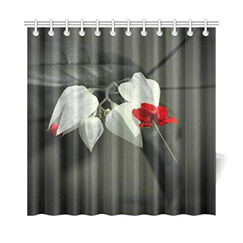 Presock Duschvorhänge, Home Decor Bath Curtain Glory Bower Bagflower Clerodendrum Thomsoniae Polyester Fabric Waterproof Shower Curtain for Bathroom, 60 X 72 Inch Shower Curtains Hooks Included