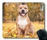 Gaming-Mousepads, bunter niedlicher Hund Pitbull Hund, Präzisionsnaht, haltbare Mausunterlage