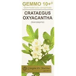 Dr. Giorgini Integratore Alimentare, Biancospino Gemmoderivato Concentrato Liquido Analcoolico - 100 ml