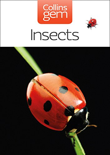 Insects (Collins Gem) por Michael Chinery