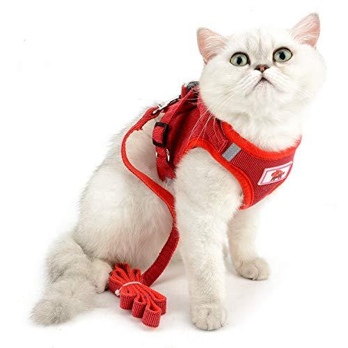 SELMAI Geschirre und Leinen für kleine Hunde Weiches Mesh Haustier Katze Weste Geschirre für Welpen Komfort Verstellbarer Kragensatz Cord Einfarbig Sommer Gehen Draussen,rote,L