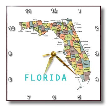3dRose dpp_112383_3 Color Map of Florida Counties-Wall Clock, 15 by