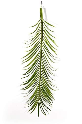 artplants Set 'Künstliche Phönix Wedel + Gratis UV Schutz Spray' – Deko Palmwedel Katy, 18 Stück, grün, 165 cm