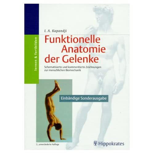 PDF] Funktionelle Anatomie der Gelenke. Schematisierte und ...