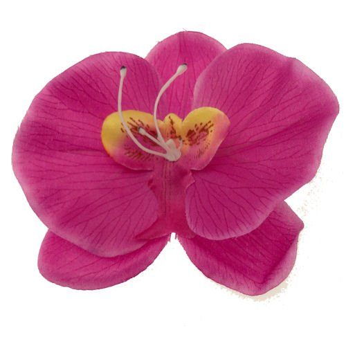 Acosta-prpura-de-la-orqudea-Tropical-de-verano-diapositiva-de-la-flor-de-la-pinza-de-pelo-accesorioVelo