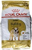 Royal Canin Breed Nutrition Bulldog 24 adult - Croquettes 3 kg