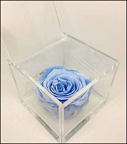 AA 1084 Cuberose Cubo Rosa Stabilizzata Azzurra 8cm 8x8x8 - il Cubo con una vera e propria Rosa eterna, dura più di 5 anni, non ha bisogno di acqua ne luce PREMIUM-ROSE.com