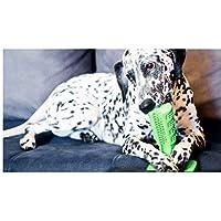DOUTREE Brushing Stick, DoggyBrush - El Cepillo de Dientes más eficaz del Mundo para Perros, Cuidado Oral para Mascotas, Cepillo para cepillos para Perros (Verde)