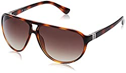 Calvin Klein Gradient Aviator Men Sunglasses (Ck 3154 214 62 S|62 millimeters|Brown)