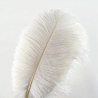 SHthree Blanc Plumes d'autruche 15-75CM 6-30 Pouces Bricolage Robe de fête de Mariage de noël décorations Naturelles Plumes d'autruche, 50-55CM 20-22inch, 50 pcs