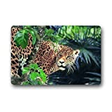 Dalliy Leopard Fu?matten Doormat Outdoor Indoor 23.6