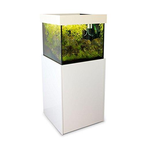 Axperto Design-Aquarium