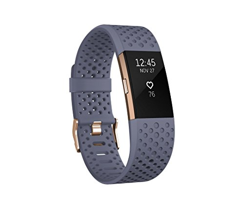 Preisvergleich Produktbild Fitbit Charge 2 Unisex Armband zur Herzfrequenz und Fitnessaufzeichnung,  Grau Blau,  S