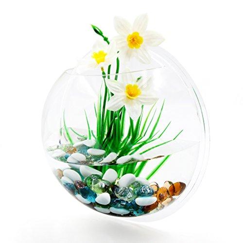 sourcing map Klar Acryl Wandmontierte Fischglas Betta Tank Hängend Pflanze Pot Schale Haus Dekor (Schalen Fisch Aquarium)