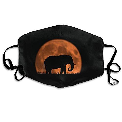 Vbnbvn Mundmaske,Wiederverwendbar Anti Staub Schutzhülle, Dust Mask Sun Set and Elephant Outdoor Mouth Mask Anti Dust Mouth Mask for Man Woman -