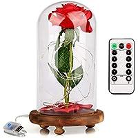 """Tenva """"La Bella y la Bestia"""" Rose Roja Kit Completo con Cúpula de Cristal,Luz LED y Base de Madera Marrón Cubierta para la Decoración,Boda,Fiesta,Cumpleaños,Aniversario,San Valentín.Día de la Madre"""