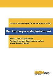 Der kostensparende Sozialraum?: Berufs- und fachpolitische Perspektiven des Sozialraumansatzes in der Sozialen Arbeit
