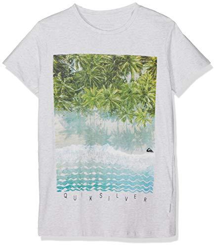 Quiksilver Jungen Perth Or Bust T-Shirt, Gardenia Heather, S/10 -