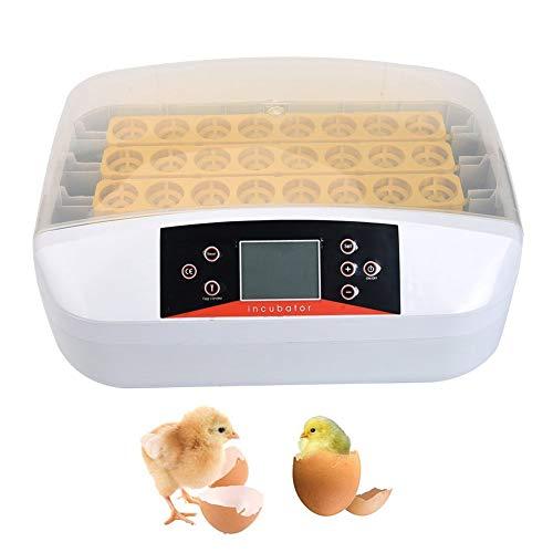 Produktbild WLDOCA 32 Eier Inkubator Brutmaschine Vollautomatisch Brutapparat, Intelligent,  Digital,  Inkubationsgerät,  Schlüpfen von Küken