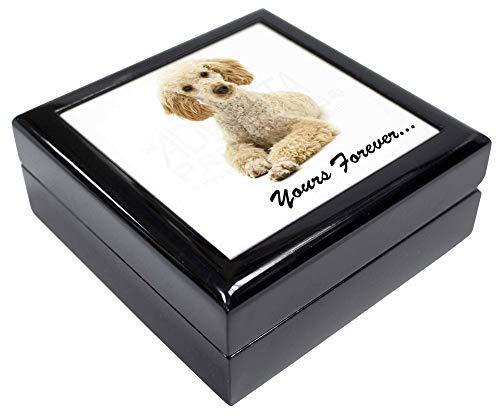 Advanta - Jewellery Boxes Apricot Pudel Yours Forever. Andenken/Schmuck Box Weihnachten Geschenk -