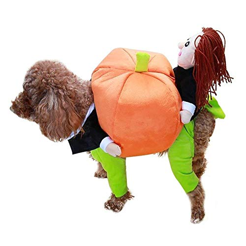 Haustier Kostüm Hund Halloween Weihnachten Bekleidung Kleidung tragen Kürbis Welpen Cosplay Outfit Anzug Jacke für kleine mittlere Hund L
