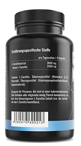 GYM – NUTRITION PREMIUM L-CARNITIN 3000 | Mega Hochdosiert | Für Die Definitionsphase und Diät | Beliebt bei Sportlern | 100 Kapseln | Vegan | Made in Germany - 2