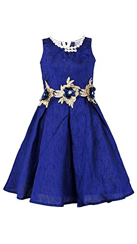 TexStile Princess Baby Girls Birthday Party wear gown Dress_10-11 Years