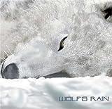 Best Bandai Anime Películas - Wolf's Rain Review