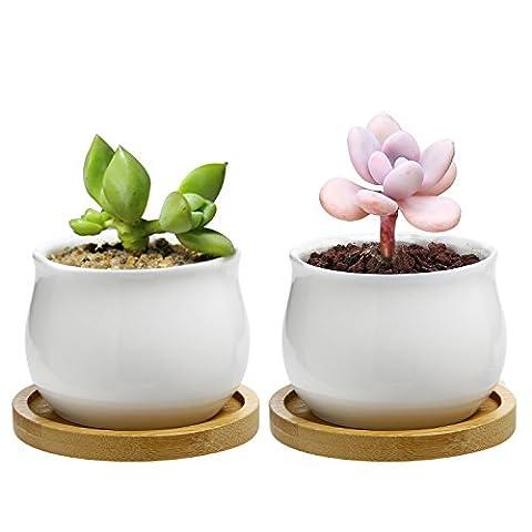 Chasegarden 7cm en céramique rond Blanc Design Simple Plante Pot/Cactus Pot de fleurs Pot de fleurs avec plateau en bambou/jardinière/boîte/pot de fleurs Blanc Package 1Lot de 2
