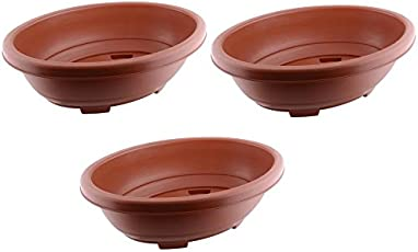 Truphe Bonsai Flower Pots - Terracota or Black 12 inch Oval (Pack of 3)