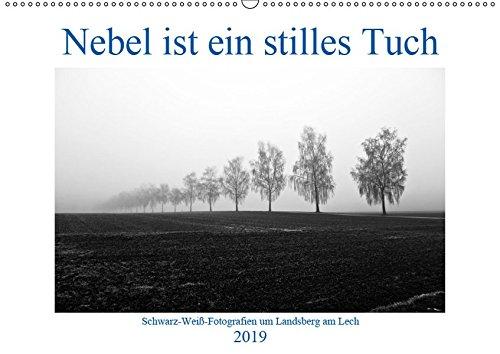 Nebel ist ein stilles Tuch - um Landsberg am Lech (Wandkalender 2019 DIN A2 quer): Schwarz-Weiß-Fotografien von Martina Marten (Monatskalender, 14 Seiten) (CALVENDO Orte)