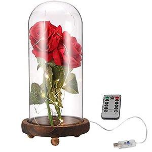 ALLOMN Rose Brillo de Seda