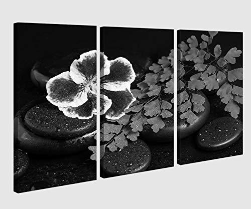 Leinwandbild 3 tlg schwarz weiß Wellness Feng Shui Steine Orchidee Blume Blaetter Bild Bilder Leinwand Leinwandbilder Holz Wandbild mehrteilig Kunstdruck 9AB250, 3 tlg BxH:120x80cm (3Stk 40x 80cm)