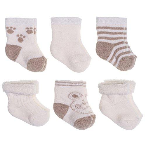 Baby Socken Erstlingssocken 6er Pack - Bärchen | warme Frottee Söckchen aus Baumwolle für Neugeborene (0-3 Monate) - Beige Creme