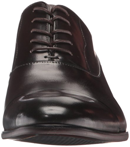 Steve Madden Mens Poter Oxford Shoe brown