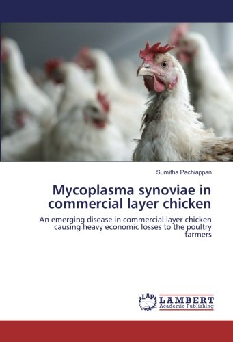 Mycoplasma synoviae in commercial layer chicken: An emerging disease in commercial layer chicken causing heavy economic losses to the poultry farmers