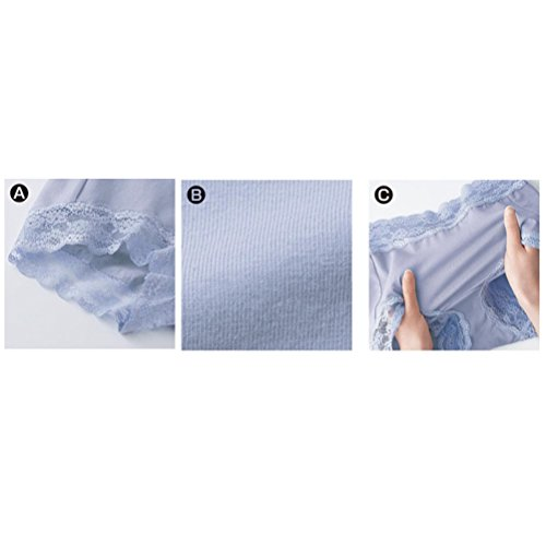 Zhuhaitf High Quality Womens Lace Underwear Traceless Transparent Low Waist Leak-free Briefs für Frauen Purple