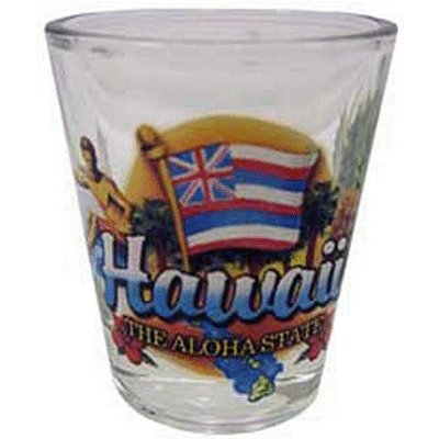 Hawaii-Aloha-State-Elements-Shot-Glass-by-World-By-Shotglass