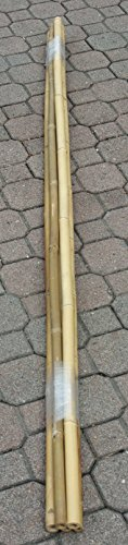 Cañas de Bambú para soporte hortalizas y otros usos de cm 210(Paquete de 5cañas