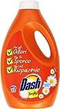 Dash - Simply Freschezza Estiva, Detersivo Liquido per Bucato in Lavatrice e a Mano - 2 pezzi da 1495 ml [2990 ml]