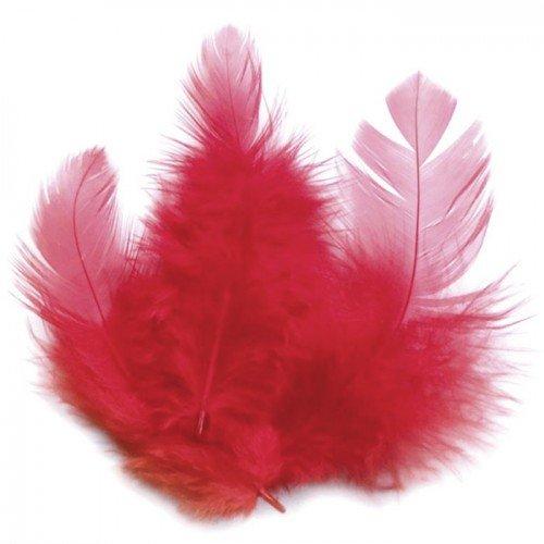 Piume di gallo 10 cm -
