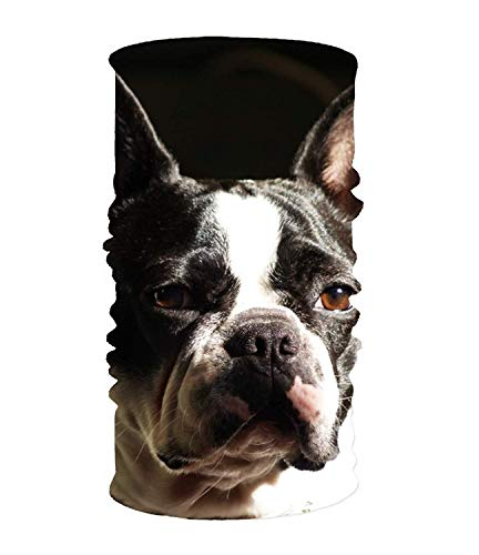Nifdhkw Multi Function Magic Scarf Constructed with High Performance French Bulldog Tube Mask Unisex10