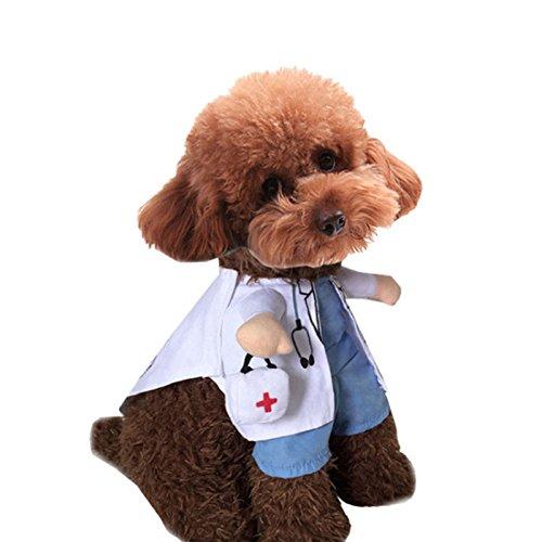 RFKMS Belletryh88 Katze/Hund Cosplay Anzug, Dog Doctor Katze Krankenschwester Halloween Pet Standing Cute ()