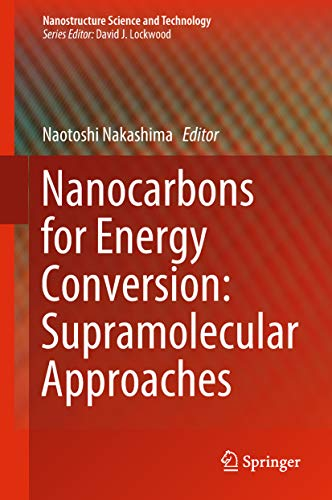 Nanocarbons for Energy Conversion: Supramolecular Approaches (Nanostructure Science and Technology) (English Edition) Batterie-storage-core