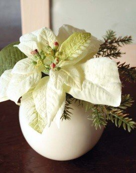 artplants Set 2 x Künstliche Weihnachtssterne Wanda im Keramiktöpfen, Creme-grün, 14 cm, Ø 20 cm – Kunstblume/künstliche Blumen