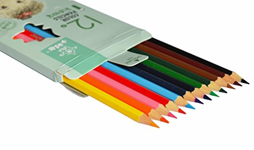 Infinxt Drawing Color Pencils For Kids 12 Shades (Blue)