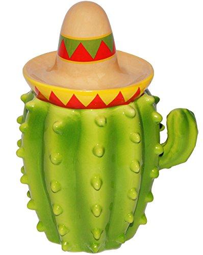 lustiger Kaktus mit Sombrero