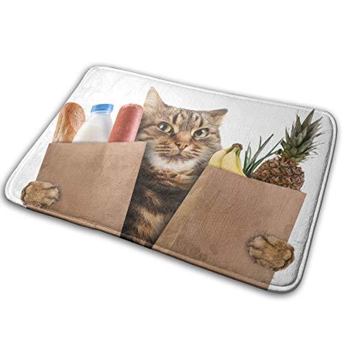 Abigails Home Lustige Katze im geschäft matten Carpet fußmatte Bad küche rutschfeste innen Eingang 15,7