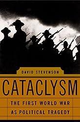 Cataclysm: The First World War As Political Tragedy by David Stevenson (2004-05-25)