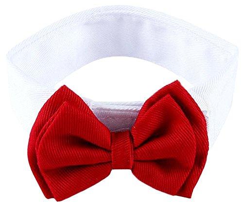 ZuckerTi Schick Hund Katze Haustier Pet Krawatte Halsschleife Krawatte Fliege Streifen Bow Tie Halsschmuck Zubehör in 3 Farben
